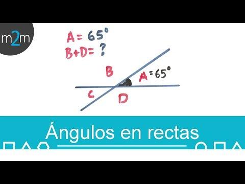 Ángulos en rectas con ecuaciones │ej 2