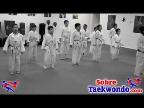 Xxx Mp4 Basic Taekwondo Class For Children 3gp Sex