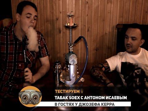 Xxx Mp4 Тестируем табак Soex с Антоном Исаевым 3gp Sex