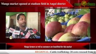 Mango market opened at stadium field in Angul district
