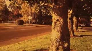 Harvest Night Trailer 2