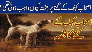 Ashab-e-Kahf ka Kutta ! Story Of Ashab Kaf ! Rohail Voice Islamic Stories