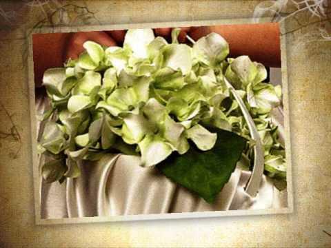 Naturaleza Exquisita Arreglos y decoraciones Novias y banquetes Flores preservadas