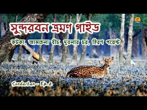 Xxx Mp4 সুন্দরবন পর্ব ২ । Kotka । Jamtola Beach । Dublar Chor । Hiron Point । Sundarban Part 2 । Khulna 3gp Sex