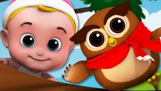 A Wise Old Owl | Junior Squad Videos | Kindergarten Songs For Children