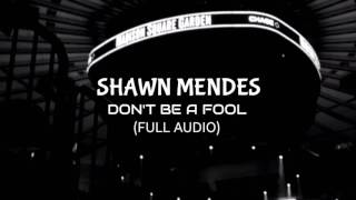 Shawn Mendes  Dont Be A Fool Full Song