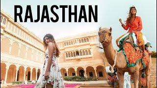 RAJASTHAN - Lavish Living in Suryagarh   Larissa Dsa🌻