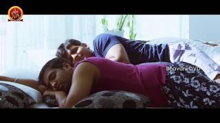 Jiiva Rangam 2 Latest 2016 Telugu Movie || Chirunavvula Chirujallu