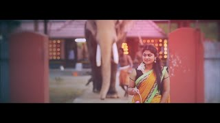 Kerala Traditional Hindu Cinematic Wedding Highlights 2016
