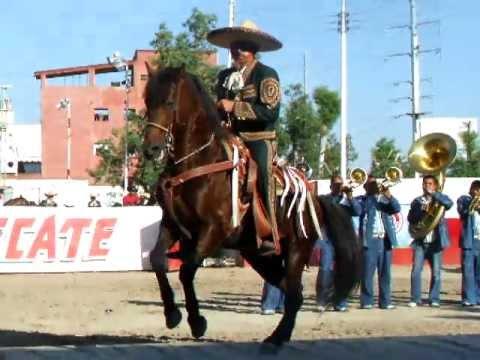 Campeonato Nacional de Caballos Bailadores de la Expo Ganadera Jalisco 2010