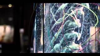 Jurassic World 2015 Official Trailer 720p HD