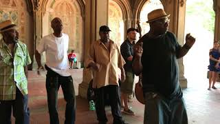 """must-see! """"Stand by Me"""" Cover Story  (Acapella Soul) Wonderful!New York  Central Park"""