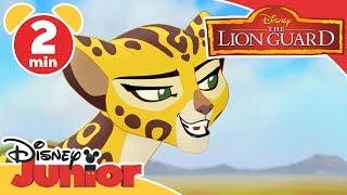 The Lion Guard   DJ On Safari: Ono and Fuli   Disney Junior UK