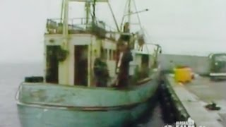 Bottomfish: Alaska's Future Fishery? (1979)