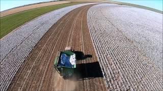 2014 Cotton Harvest Dwayne Smith