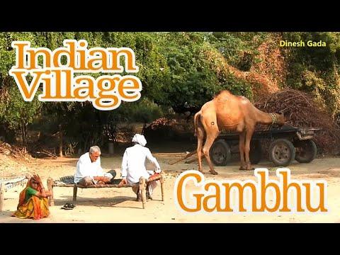 Xxx Mp4 Indian Village Gambhu Becharaji Gujarat India 3gp Sex