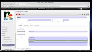 payroll in Odoo/OpenERP HR module