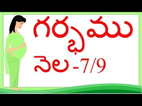 Pregnancy | Telugu | Month by Month | Month 7 | Week 25 to week 28 | గర్భం నెల 7
