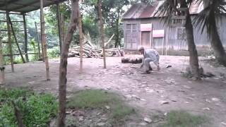 Bangladeshi real boy fight!