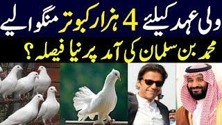 Muhammad bin Salman pigeons welcome