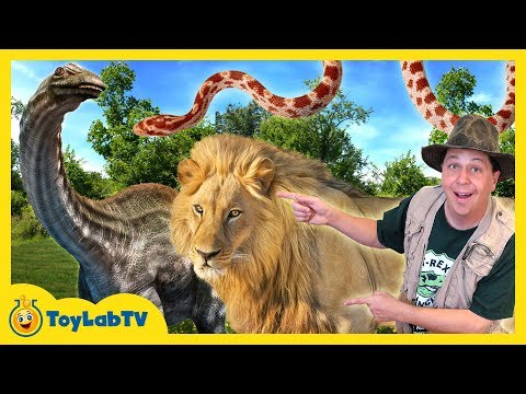 DINOSAUR CAPTURED Animal Adventure Park Family Fun Zoo Trip Children s Outdoor Activities for Kids
