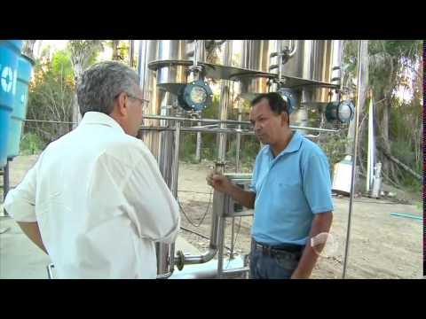 Destilaria produz etanol na zona rural de Teresina