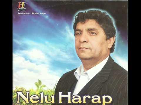 Nelu Harap - De n-ai fi fost Doamne cu mine