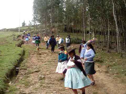 RONCADORA DE CARIAN  Y SU BAILARINA AVENCIA