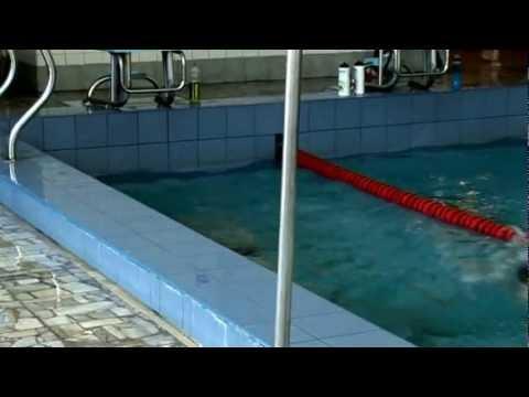 Trening pływacki Polonii Warszawa