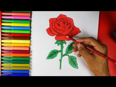 Xxx Mp4 How To Draw A Rose Easy 3gp Sex