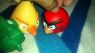 Angri bird