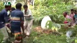 চঞ্চল চৌধুরীর আবিষ্কৃত ঘোড়ার ডিম    হাসতে হাসতে পেটে খিল ! NTV Natok Funny Video