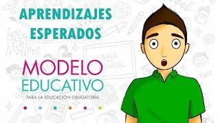 APRENDIZAJES ESPERADOS   NUEVO MODELO EDUCATIVO