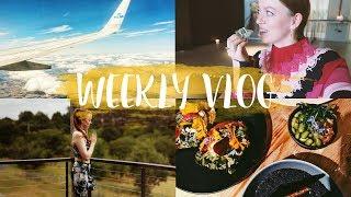 Meditation lernen, Yoga in Amsterdam & das berühmte Avocado Restaurant #WEEKLYVLOG