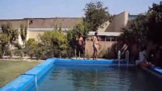 Sunny in Pool