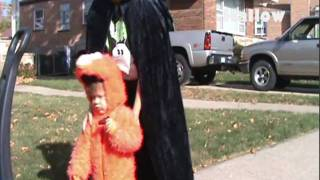 ELMO Halloween Sign No Candy Candy Trick or Treat Free Decorations Incredible Concept
