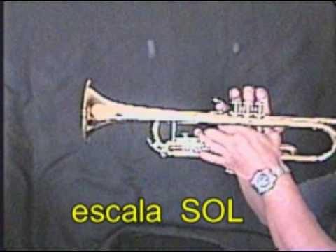 LAS 7 ESCALAS MUSICALES TROMPETA SI b IO STUDIO CD. ACUÑA