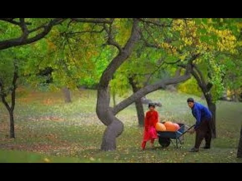 Xxx Mp4 GILGIT BALTISTAN THE LAND OF BEUTY AND HOSPITALITY 3gp Sex