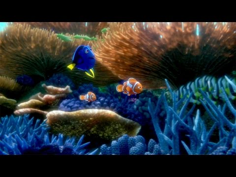 You ve Found the Latest Finding Dory Trailer