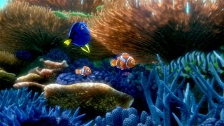You've Found the Latest 'Finding Dory' Trailer