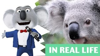 SING Movie REAL LIFE All Characters