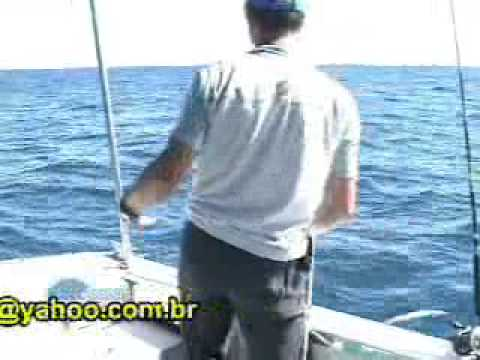 Pesca Dinâmica Pesca de peixes Espadas e Bagre gigante na região de São Francisco do Sul SC