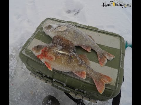 видео блесна на озере