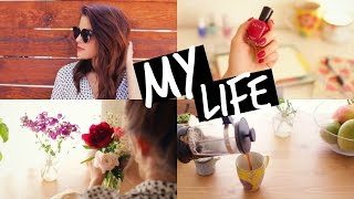 A Day In My Life | Carrie Rad