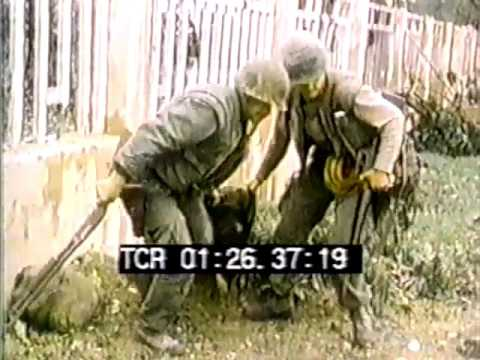 Xxx Mp4 US Marines At Hue Vietnam 1968 3gp Sex