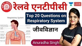 4:00 PM | Top 20 Questions on Respiratory System |  by Anuradha Ma'am | RRB NTPC 2020