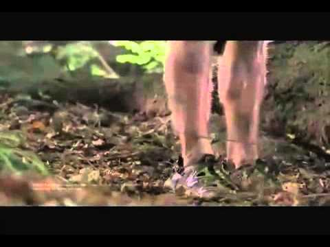 Xxx Mp4 Wrong Turn 3 Left For Dead 2009 Trailer 3gp Sex