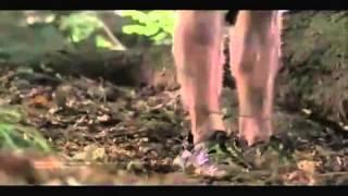 Wrong Turn 3: Left for Dead (2009) - Trailer