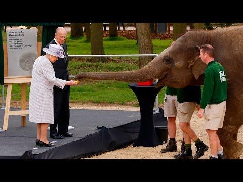 Xxx Mp4 HM The Queen Opens Centre For Elephant Care 3gp Sex