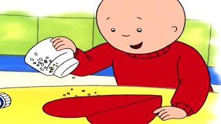 Caillou Full Episodes - 4 HOURS | Caillou Learns How to Dress | Cartoons for Children
